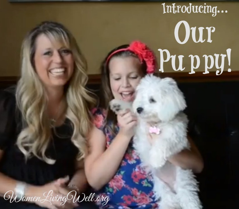Introducing…our puppy!