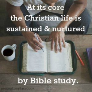 A Demonstration of My Bible Study Methods & a Free Logos Webinar