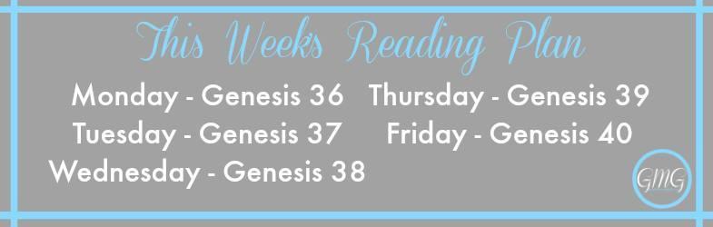 November week 1