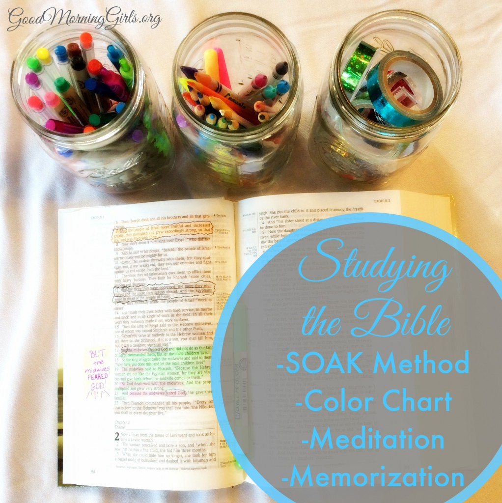 Studying the Bible SOAK Color Chart Mediation Memorization