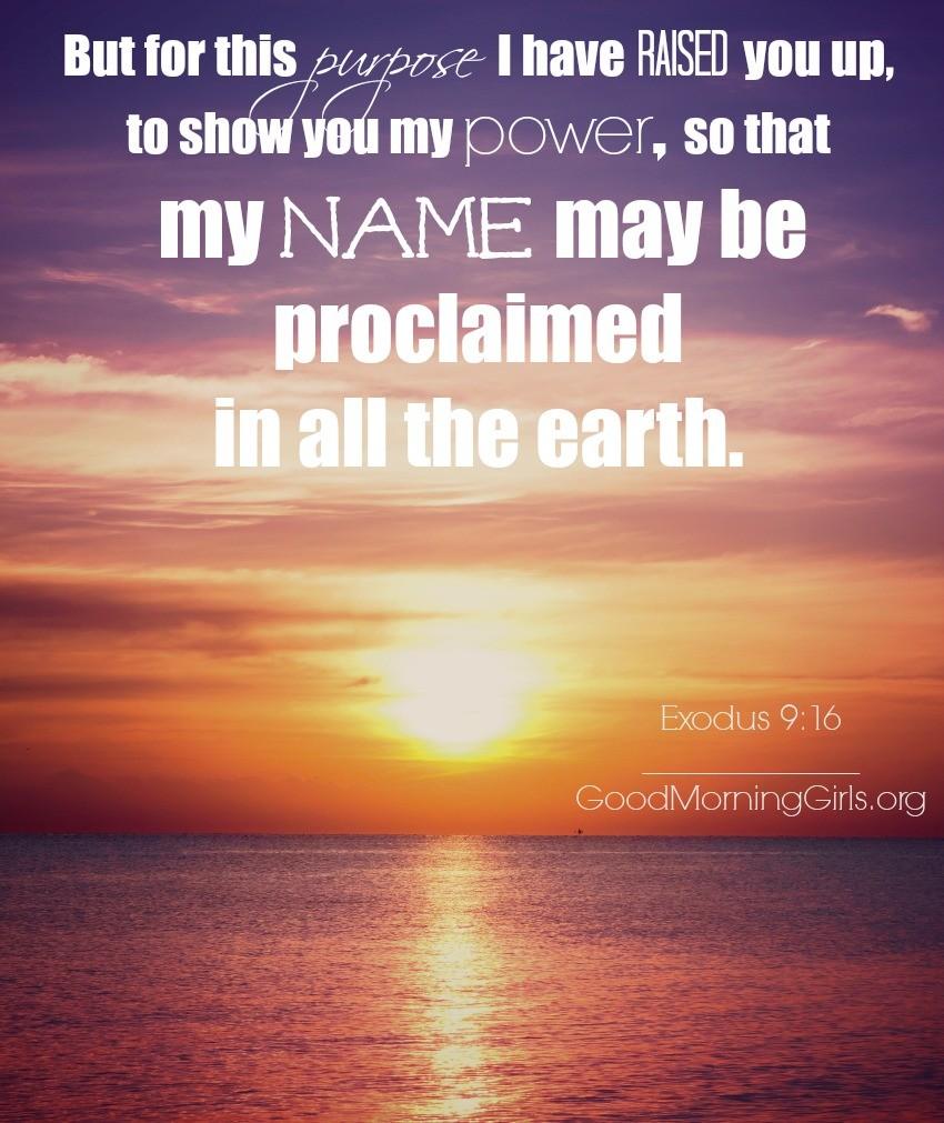 Exodus 9:16