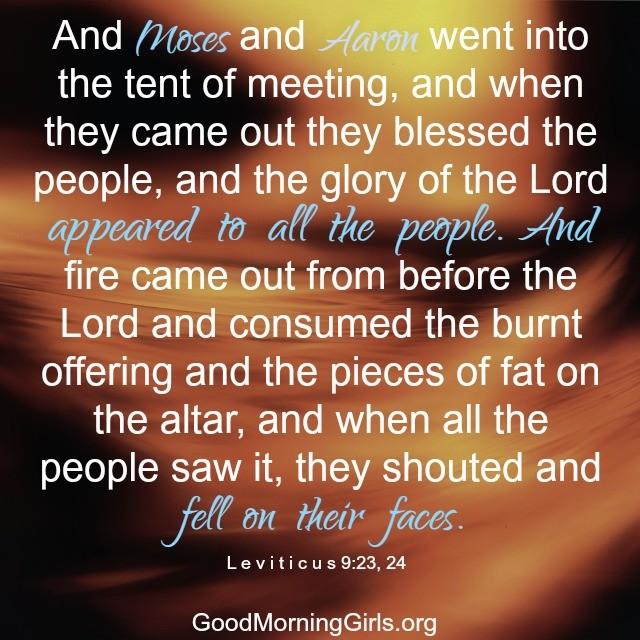 Leviticus 9:23,24