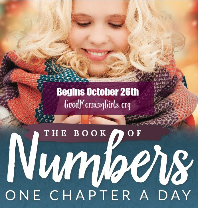 The Book of Numbers One Chapter a Day