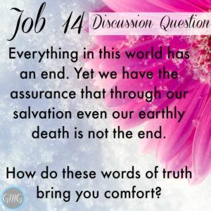 Job 14a