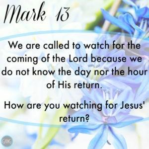 Mark 13