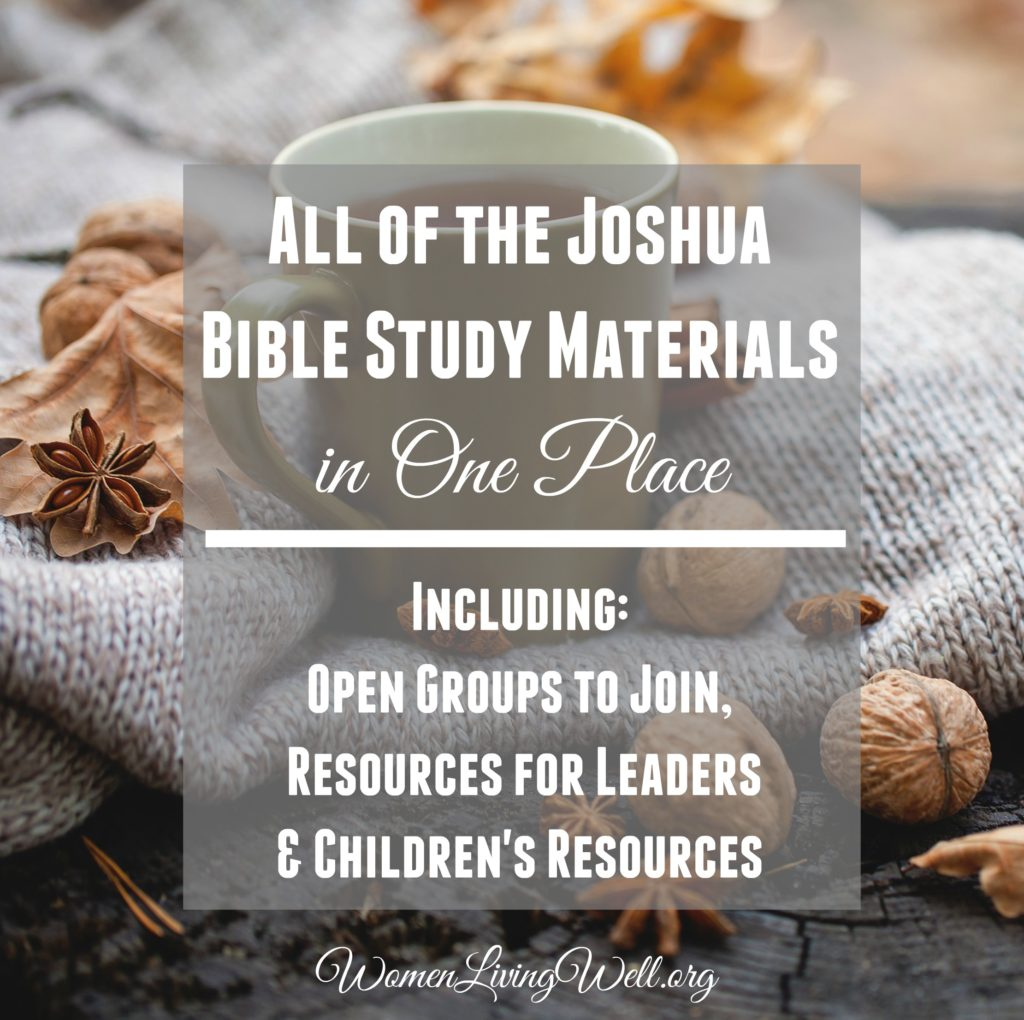 Study on the book of joshua