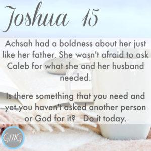 joshua-15