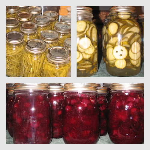 Tasty Tuesday: How to Can Green Beans, Sweet Dill Pickles, and Blueberry Pie Filling!