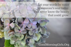 Your Words…