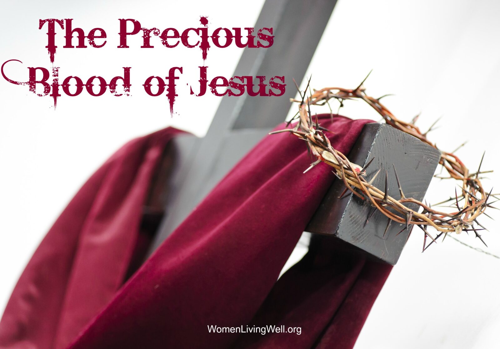The Precious Blood Of Jesus Women Living Well