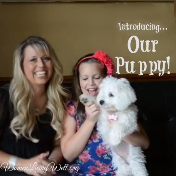 Introducing…Our Puppy!!!!!