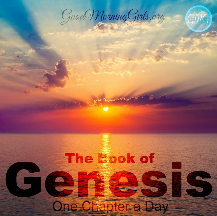 Join Good Morning Girls as we read through the Bible cover to cover one chapter a day. Here are the resources you need to study the Book of Genesis. #Biblestudy #Genesis #WomensBibleStudy #GoodMorningGirls