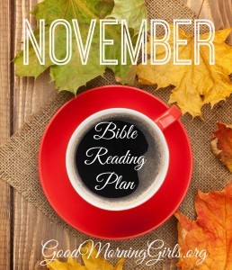 November Bible Reading Plan {11.2.14}