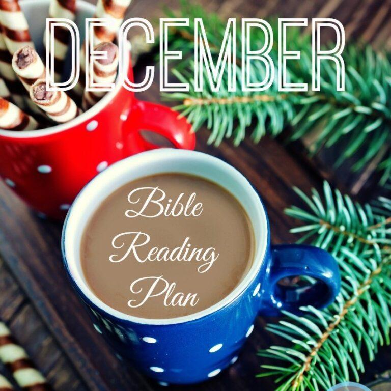 The December Bible Reading Plan