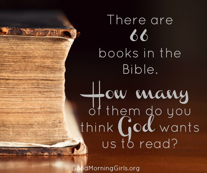 Is all of the Bible still relevant to us today? How much of the Bible does God want us to read? Are we obligated to read the books we don't understand? #Biblestudy #Genesis #WomensBibleStudy #GoodMorningGirls