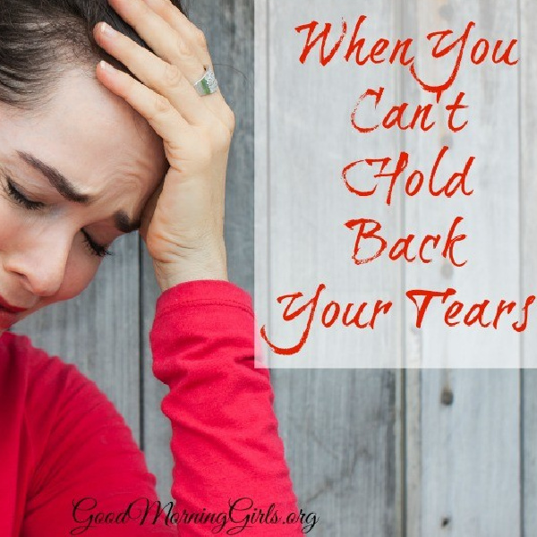When You Can't Hold Back Your Tears {Genesis 42-45}