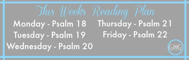 December week 3