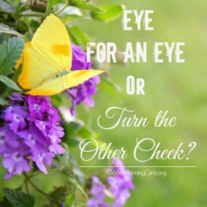 Eye for an Eye or Turn the Other Cheek? {Leviticus 24}