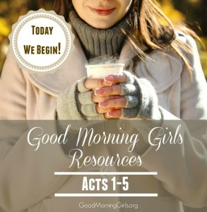Today We Begin!  {Intro & Resources for Acts 1-5}