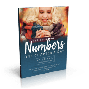 The Book of Numbers Journal - One Chapter a Day