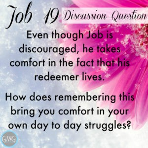 Job 19a