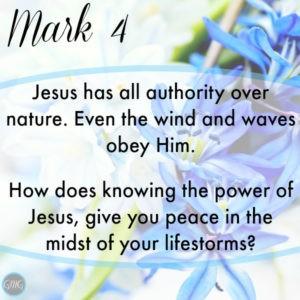 Mark 4