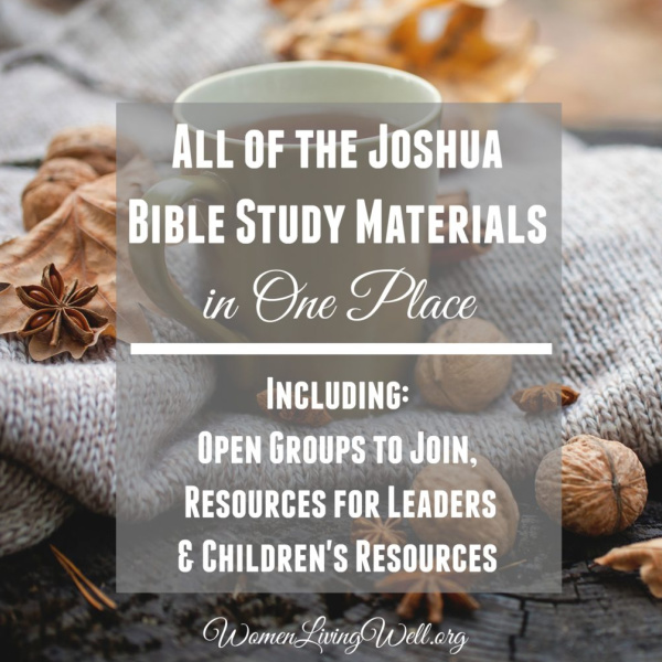 All of the Joshua Bible Study Materials in One Place {Including Open Groups, Resources for Leaders & Resources for Children}