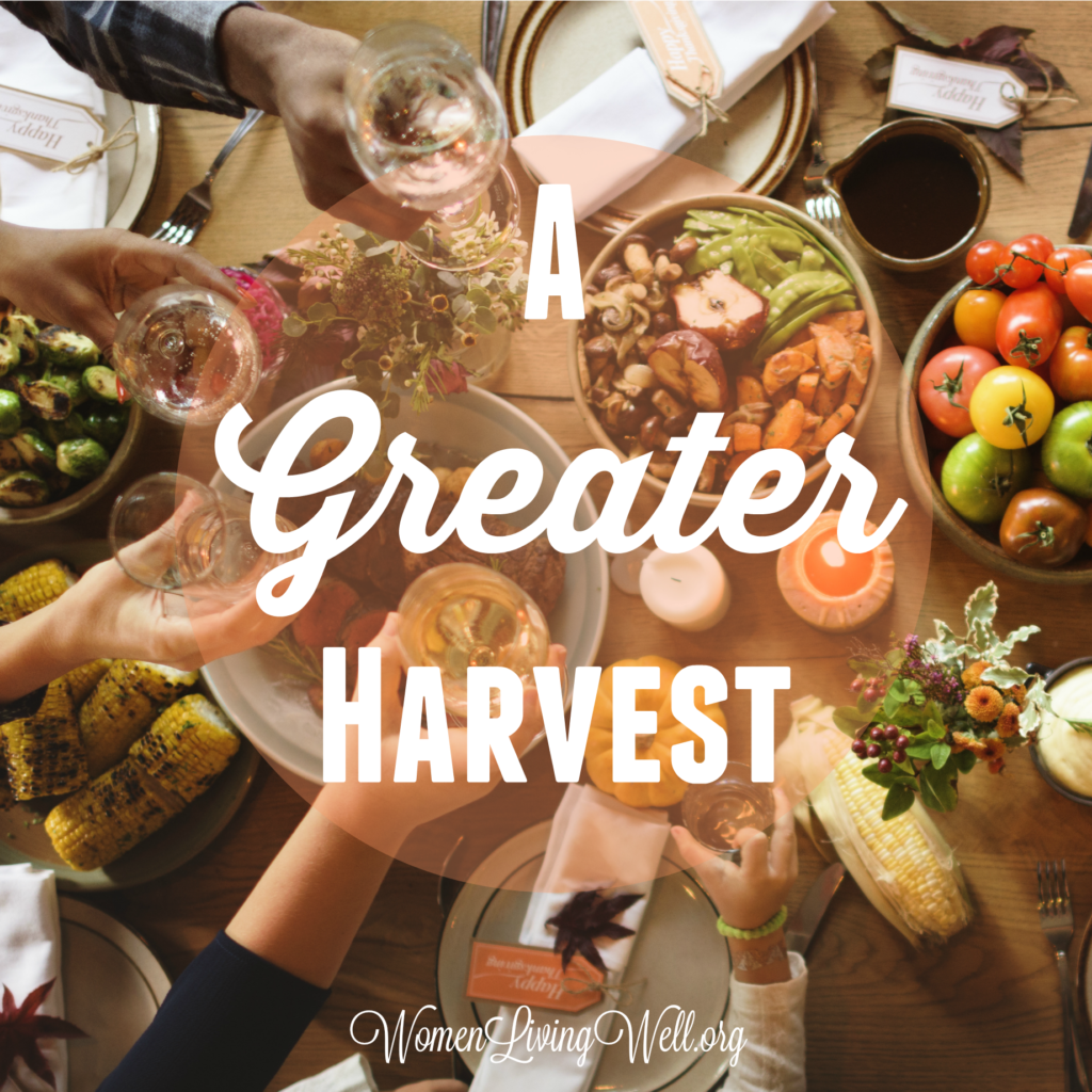In the Old Testament, God instructed His people to rest the land for a greater harvest. This princple of rest applies to our lives too. Here's how. #Biblestudy #restandrelease #WomensBibleStudy #GoodMorningGirls