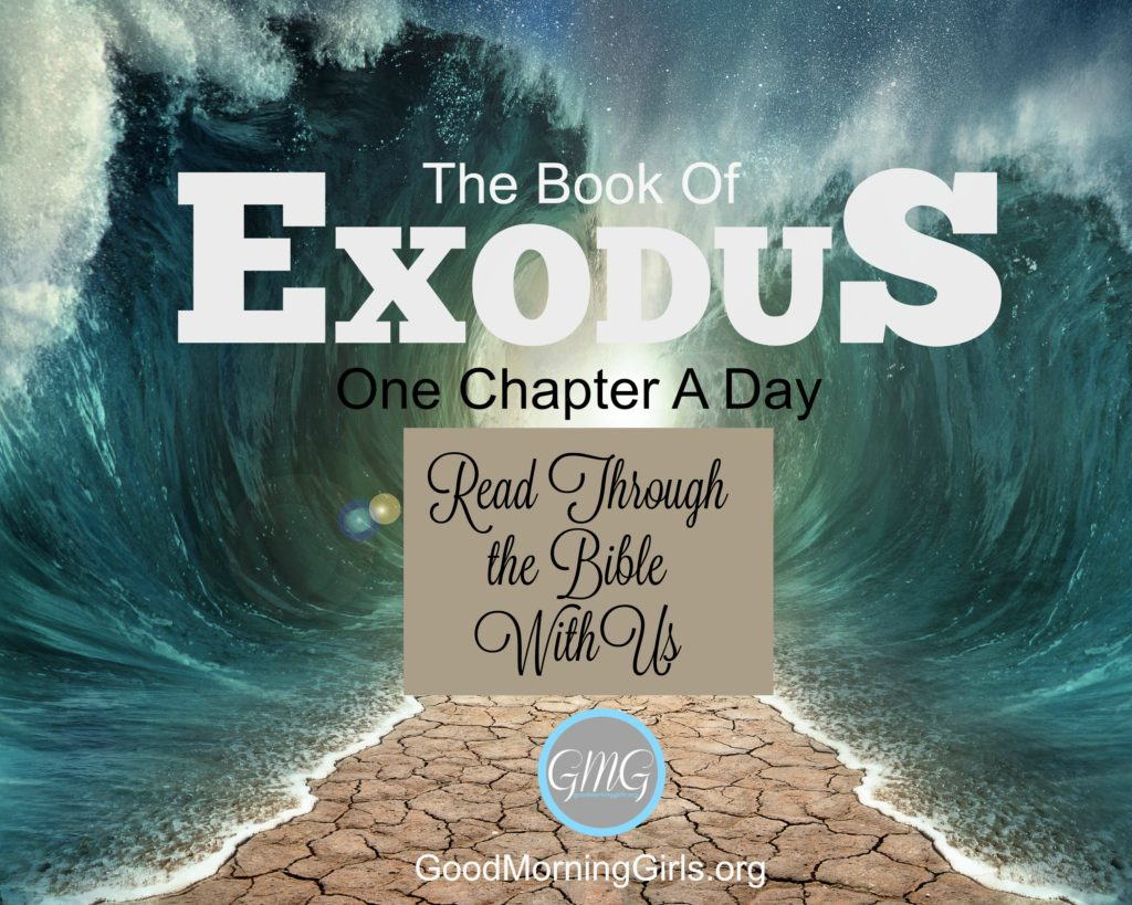 Study the Book of Exodus with this free online Bible study from Good Morning Girls' and find all of the graphics, blog posts and videos right here! #Biblestudy #Exodus #WomensBibleStudy #GoodMorningGirls