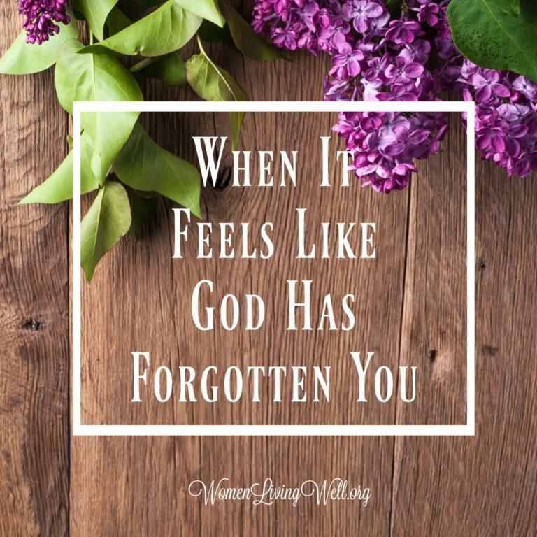 When It Feels Like God Has Forgotten You