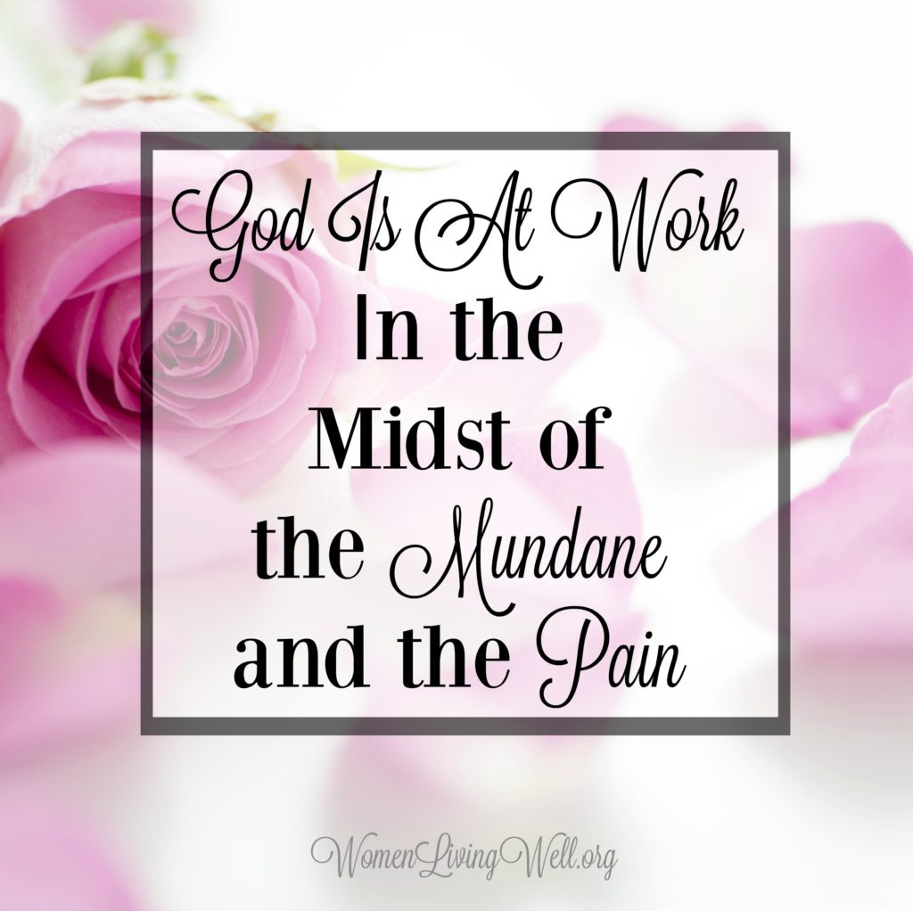 In the mundane and painful times of our life, we should encourage our hearts with the truth that God is at work even in the midst of the mundane and the pain. #Biblestudy #Ruth #WomensBibleStudy #GoodMorningGirls
