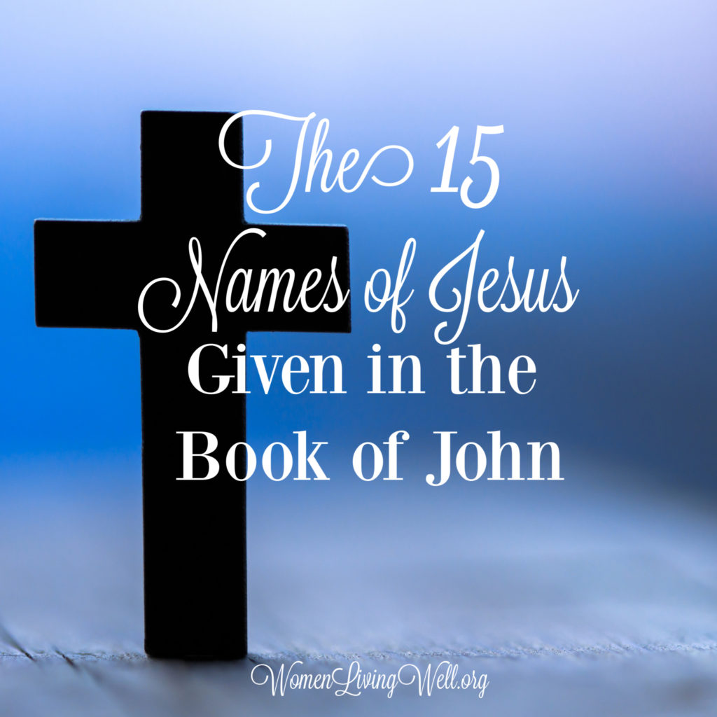 In the Gospel of John we see Jesus in a way we don't see Him in any of the other three gospels. Here are 15 names of Jesus we see in the book of John.  #Biblestudy #John #WomensBibleStudy #GoodMorningGirls
