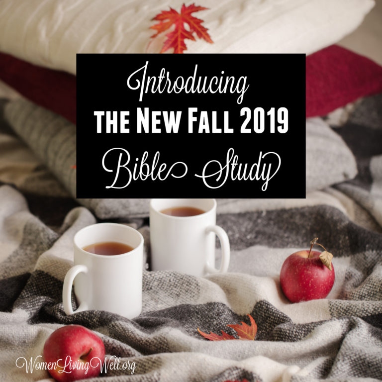 Introducing the New Fall 2019 Bible Study