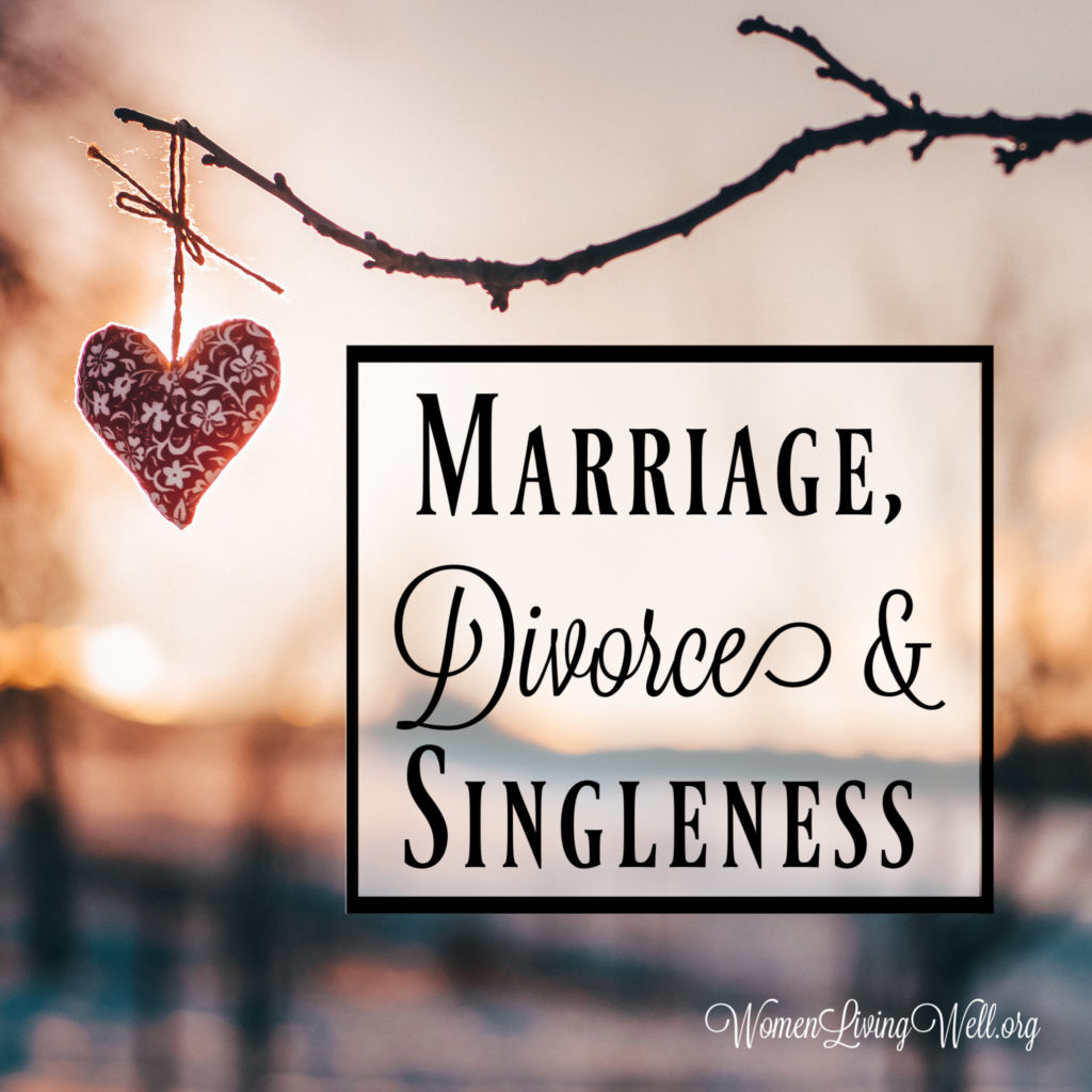 The Bible addresses all of these: the blessing of marriage, the pain of divorce, and the calling to singleness - and here is what Paul says to each.