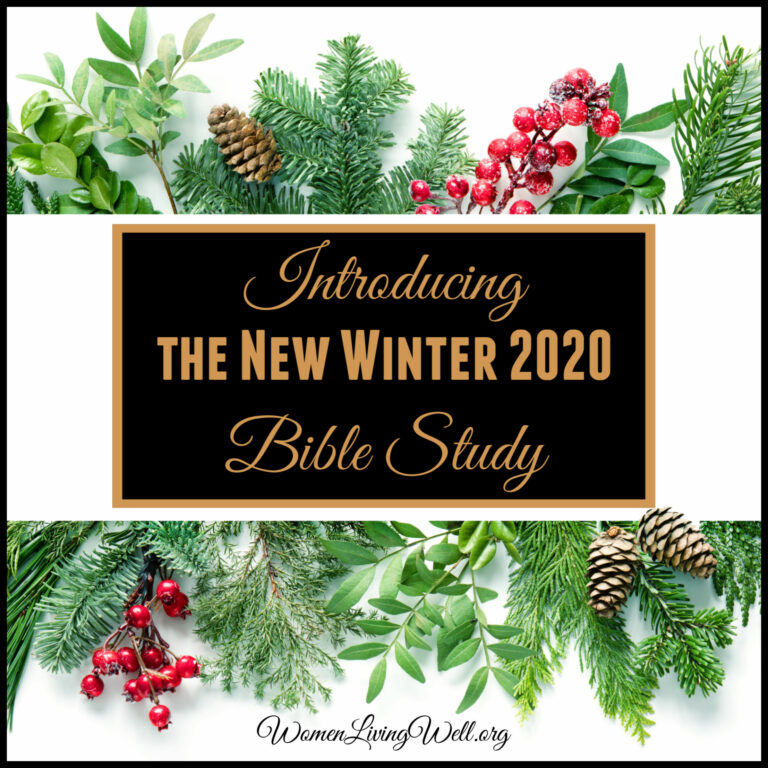 Introducing the New Winter 2020 Bible Study