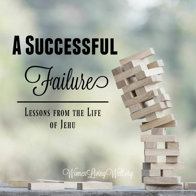 A Successful Failure:  Lessons from the Life of Jehu
