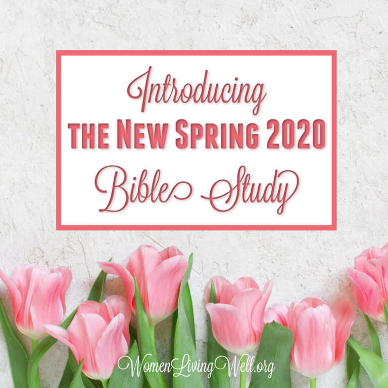 Introducing the New Spring 2020 Bible Study