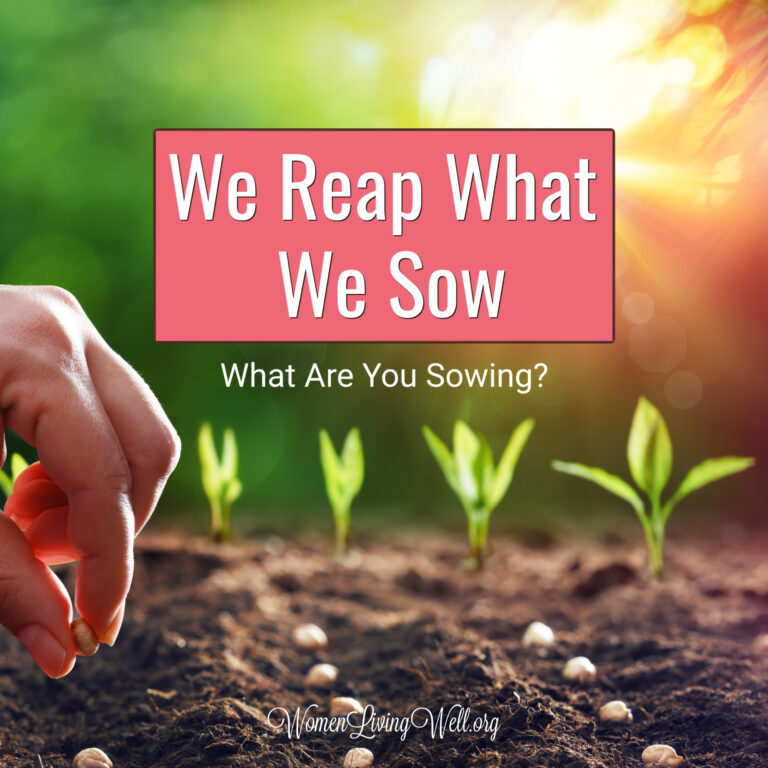 We Reap What We Sow – What are You Sowing?