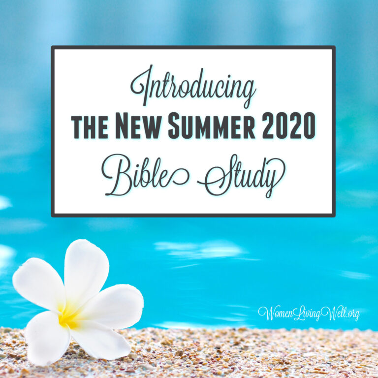 Introducing the New Summer 2020 Bible Study