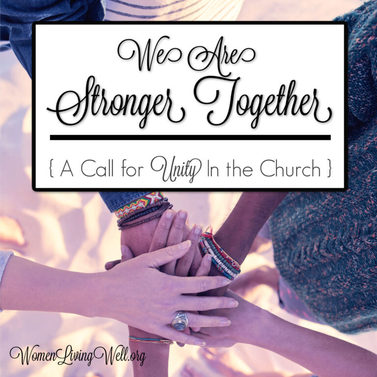 We Are Stronger Together  {A Call for Unity in the Church}