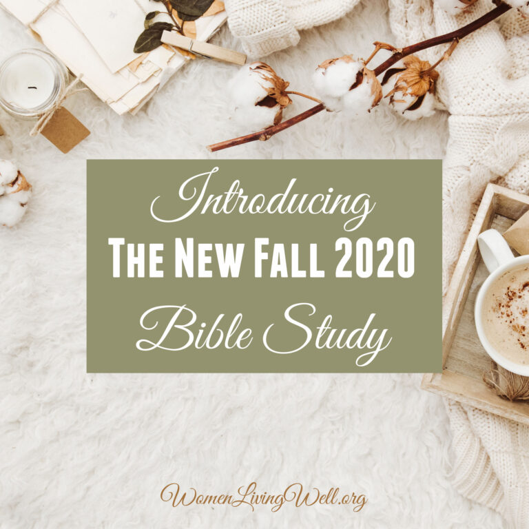 Introducing the New Fall 2020 Bible Study