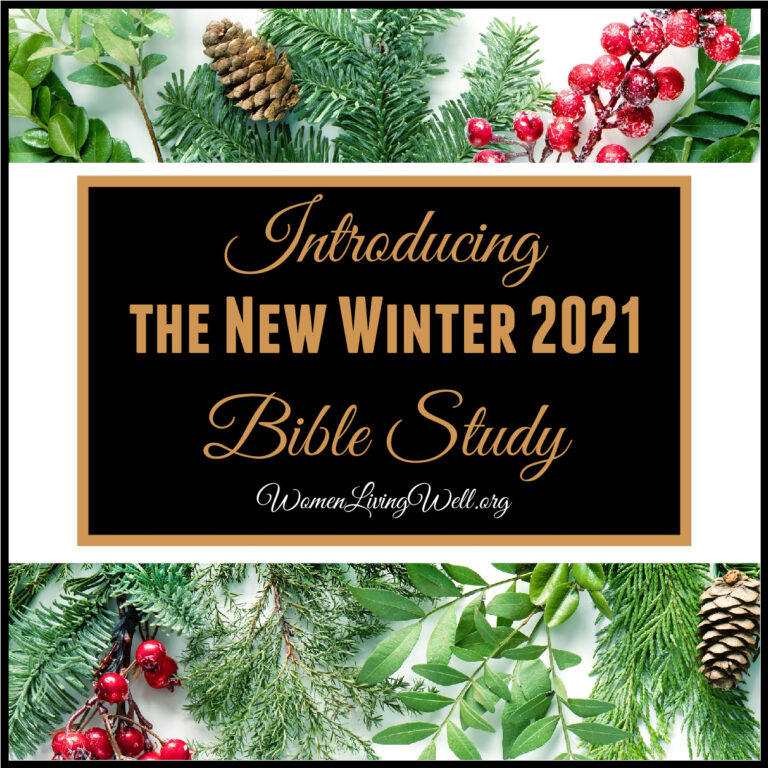 Introducing the New Winter 2021 Bible Study