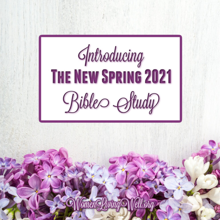 Introducing the New Spring 2021 Bible Study