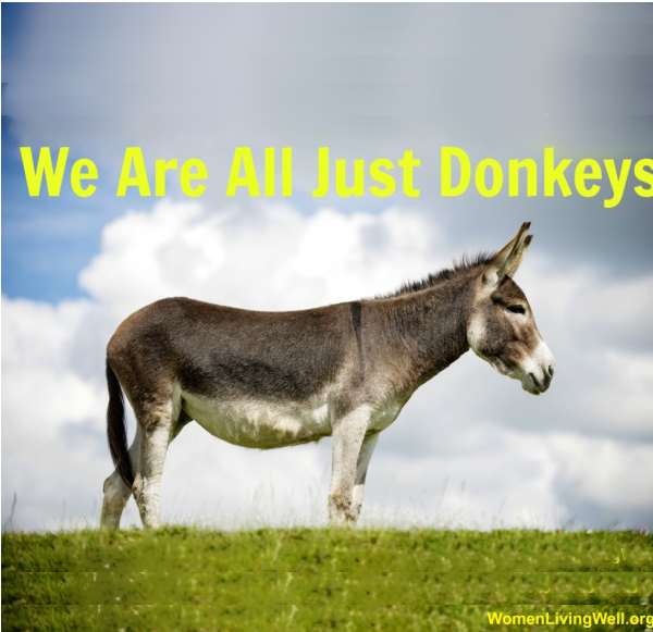 We Are All Just Donkeys