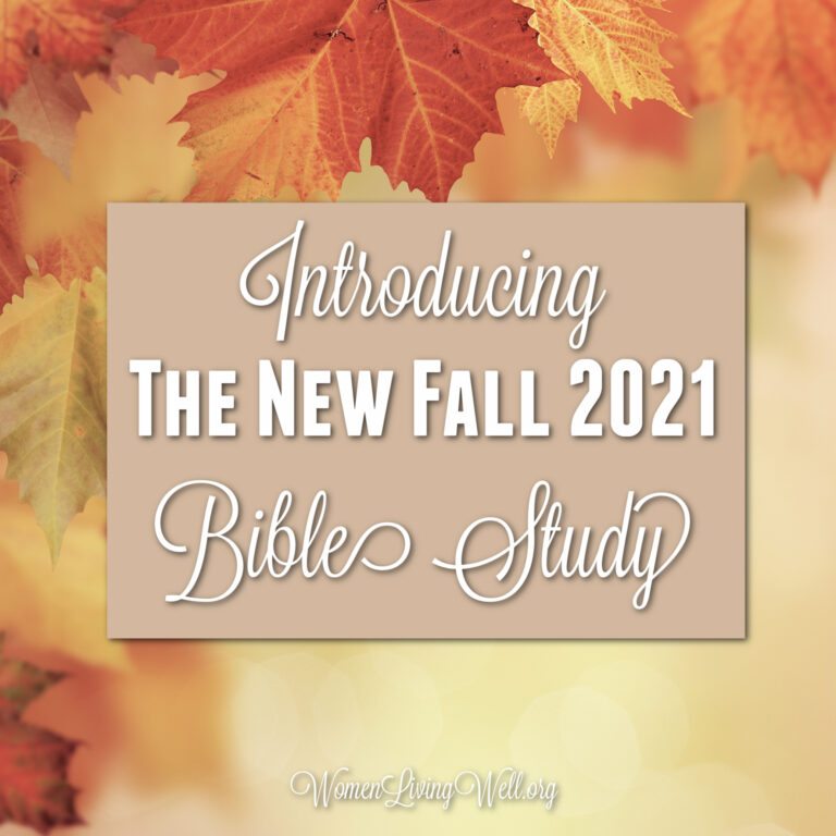 Introducing The New Fall 2021 Bible Study